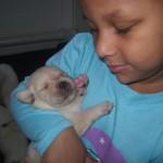 puppies2014 006